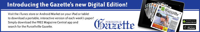 Brittany Salatino - Graphic Designer for the Purcellville Gazette